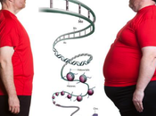 Sovrappeso obesità, tutta colpa gene