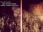 """Recensione Cortometraggio """"Miracolo Veneto"""" Luca Tassone Luigi Pastrello"""