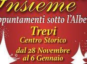 Natale Insieme Trevi appuntamenti sotto l'Albero dicembre 2014