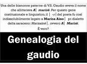 bisnonna paterna V.S.Gaudio allitterava A.(ino) Marisa│
