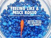 Feeling like pesce rosso: metodi ritrovare memoria