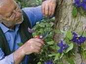 nuovi corsi giardinaggio Flora 2000 Budrio