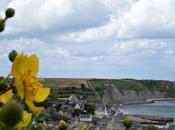 Normandia: bellezza della natura tristezza dell'uomo.