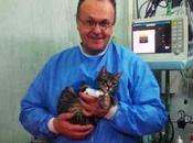 Napoli. Mario, primo gatto Europa pacemaker