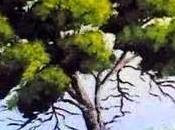 Sono albero angioletta faccini.