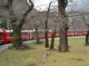 Pizzoccheri della Valtellina trenino rosso Bernina