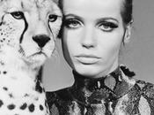 #BeautyIcon: Veruschka