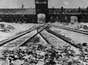 Giornata della memoria, dimenticare l'Olocausto