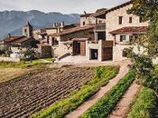 Ri-abitare: interni contemporanei fattoria pietra