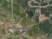Siracusa: strage cani contrada Serramendola, almeno animali uccisi dall'uso lumachicida