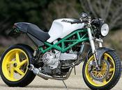 Ducati Monster Steve Motorcycle Supply