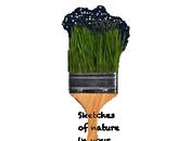SoNiYb Award: Sketches nature your blog!