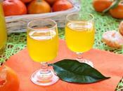 Mandarinetto Liquore Mandarino