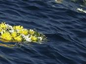 Strage Lampedusa: morti oltre migranti