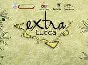 Extra Lucca, l'olio extravergine d'oliva solo…