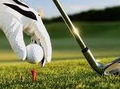 Cellerino Gazzolo vincono golf