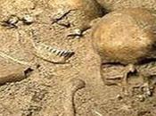 Bio-Archeologia