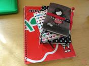 Agende, diari, taccuini, quaderni...