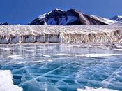 Nuove Forme Vita sotto Ghiacci dell'Antartide