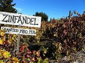 Vitigni vini mondo: storia vera dello Zinfandel