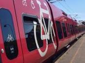 """Mobilità, """"bici anche treni lunga percorrenza"""". Alla Camera proposta deputato Gandolfo"""