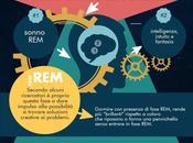 REM: quel sonno rende creativi