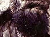 Viking ivan brandon klein adottato curva tifosi cesena