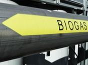 04/03/2015 SPECIALE sicurezza antincendio degli impianti produzione biogas