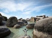mila miglia intorno mondo #29: risalendo Sudafrica pinguini pesce