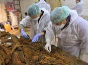 Archeologia. Trovato sepolcro resti Cervantes, padre Chisciotte