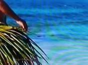 Isola famosi: Rocco nudo ustiona parti intime, costretto vestirsi