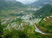 L'incanto delle terrazze riso Banaue