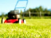 24/03/2015 L'e-gardening, nuova frontiera giardinaggio green. Perchè forse tutti sanno emissioni rasaerba equivalgono quelle automobili