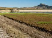 rifugio l'anima: l'Oasi Lago Conza provincia Avellino