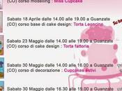 corsi cake design: calendario aprile, maggio, giugno 2015. Impara decorare torte solo...