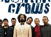 Counting Crows: band torna concerto imperdibili appuntamenti, I° luglio 2015.
