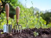 Aprile: lavori questo mese giardino