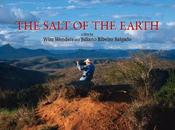 sale della terra (Wim Wenders, Juliano Ribeiro Salgado, 2014)