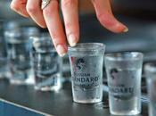 alternativi della Vodka