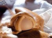 Cuddure tipico dolce siciliano viene tutt'ora preparato periodo pasquale.