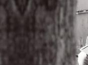 """PACIFICO SAMUELE BERSANI insieme STORIE CONOSCI"""", brano inedito scritto interpretato cantautori colonna sonora #ioleggoperché"""