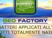 Geofactory
