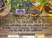 Farmacia Viva officinali tazza tavola presso Garden Zanet
