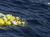 Strage migranti Mediterraneo /Europa sorda/E'una questione giustizia oltre umanità
