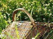 Bentornato picnic!
