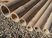 Riciclo creativo: utilizzare canne bambù vostro giardino!