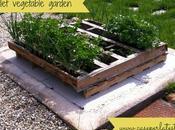 Orto pallet vegetable garden