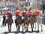 migliori cavalli sardi Sant'Efis