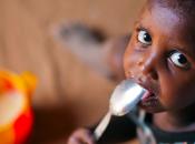 """""""Nutrire pianeta senza uccidere"""": tutto mondo appello Ki-Moon cibo verde"""