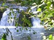 Parco Regionale Valle Treja